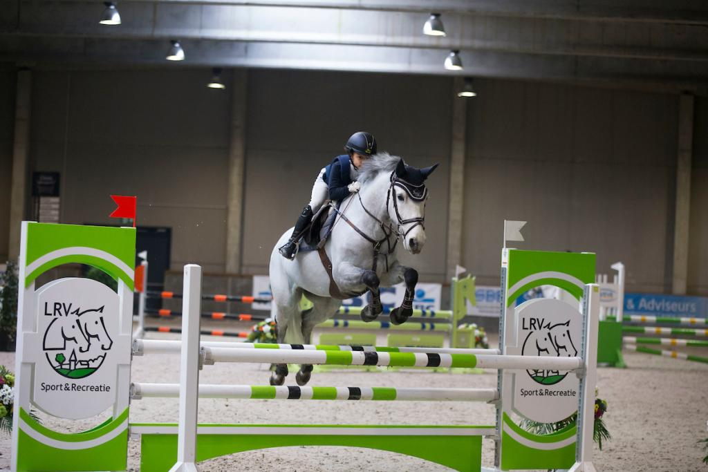 paard jumping
